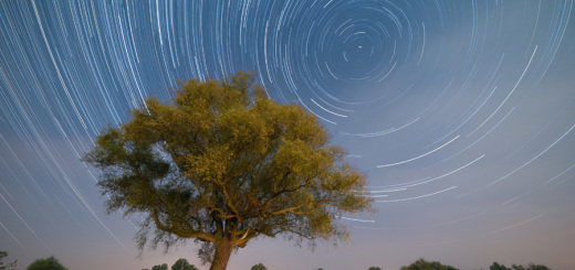 Pozorny-ruch-gwiazd-Startrails_D700_900
